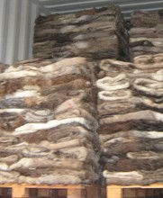 Dry Salted Goat & Sheep Skins/Wet Salted Sheep Hides