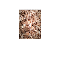 WOOD CHIPS FOR MAKING PAPER & PULP SHIP CHINA, JAPAN, INDIA AND KOREA,..
