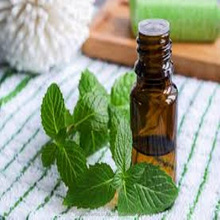 Spearmint Essential Oil For Natural Mint Flavour For Food, Candies, Mouth Freshners.