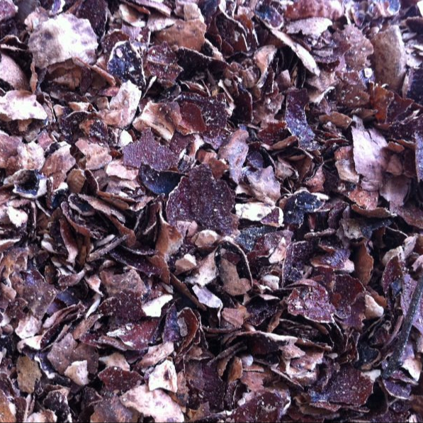 Cashew shell residue/Agricultural Waste/for animal feed