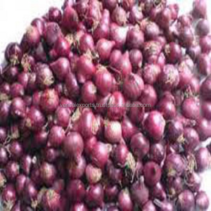 small onion From India