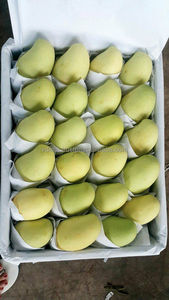 fresh mango from Viet Nam