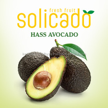 Hass Avocado from Kenya