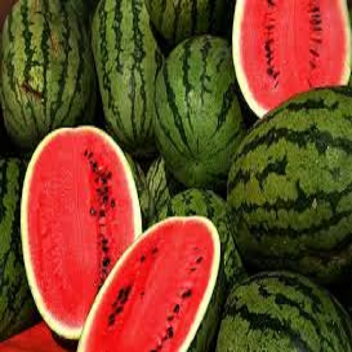 Best price Fresh Organic Melon & Water melon for sale