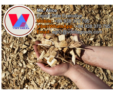Eucalyptus/Pine/Rubber/Acacia Wood Chip for Paper Pulp, MDF, PB, Power Plant