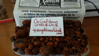 Quality Dried Cow Ox Gallstones