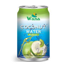 Frozen Coconut Juice With KiWi Flavor in 330ml Can