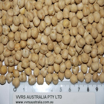High Quality Kabuli and Desi Chickpeas