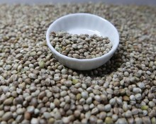 edible hemp seed for cake, human consumption