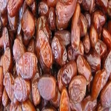 Best Dried Date Fruit for Sale
