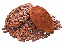 Top Quality West African Roasted Cocoa Beans/ Cocoa Powder