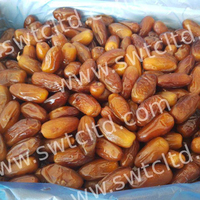 Premium Quality Deglet Nour Dates from Algerian Manufacturer