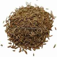 High quality wholesale price Herb & Spices Indian origin Cumin Seeds