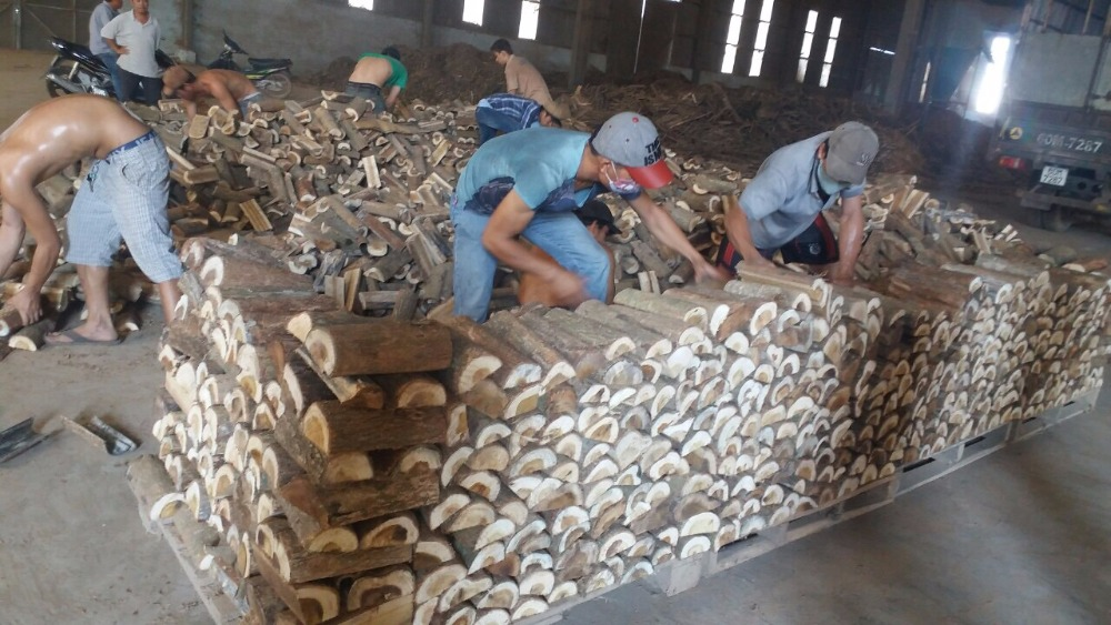 Top sale firewood from Vietnam