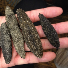 Best Quality Dried nature sea cucumber