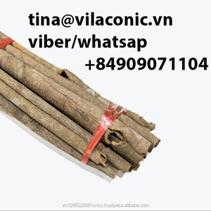 cassia whole from vietnam with best price
