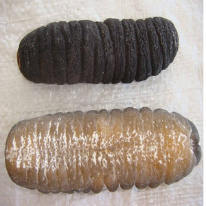 Dried/ fresh sea cucumber for sale