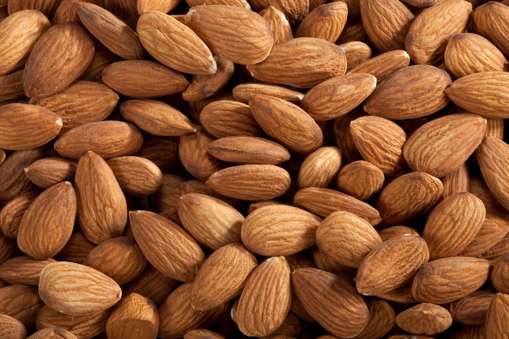 Almond Nuts / California Almonds / Nonpareil Almonds for sale