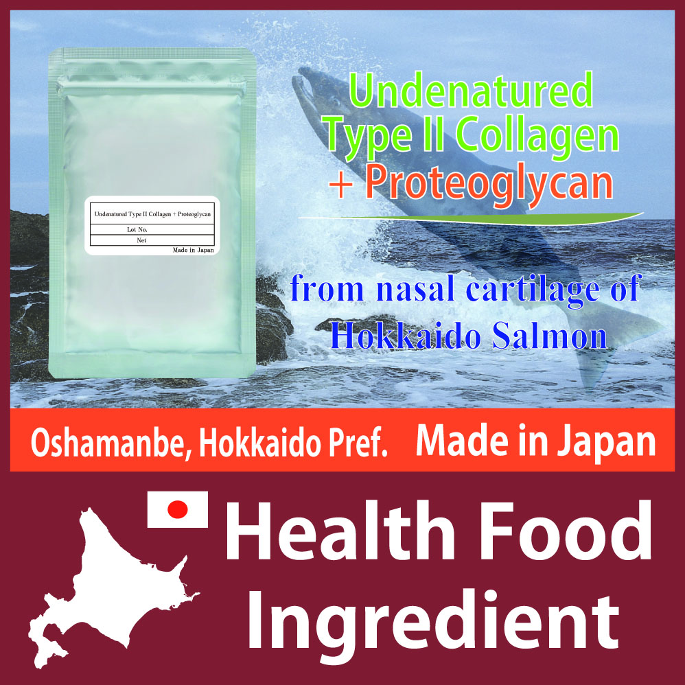 Undenatured Type II Collagen + Proteoglycan from Nasal Cartilage of Hokkaido Salmon