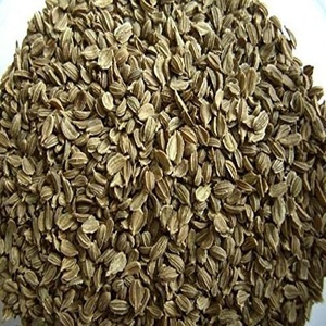 Carrot Seeds For Sale, Vegetable Seed for Sale