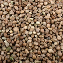 high selling wholesale agricultural hemp seeds