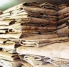 /product-detail/best-grade-wet-salted-donkey-hides-wet-salted-donkey-cow-skin-dry-salted-cow-hides-50036344605.html