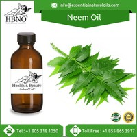 Bulk Cold Pressed 100% Natural Insecticide Neem Oil