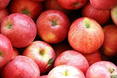 Best Price Fresh Apples