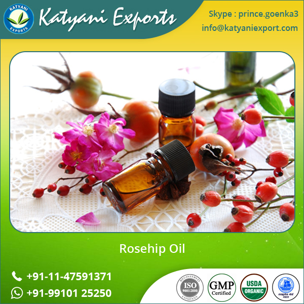 Top Brand in India for Organic Rose Hip Oil / Rosehip Oil