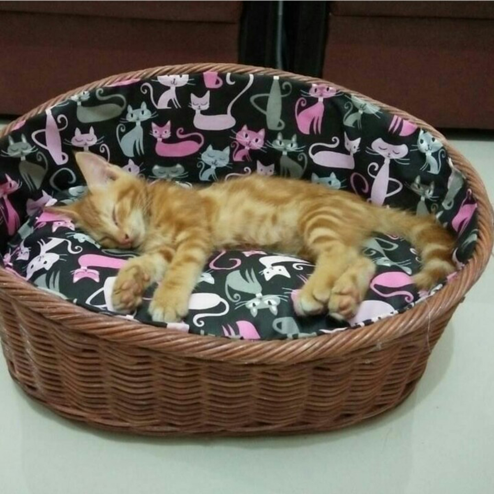 Comfortable Bed Rattan For Caring a Cat