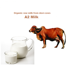 100% Natural cow fresh milk /cooked cow milk /Raw cow milk