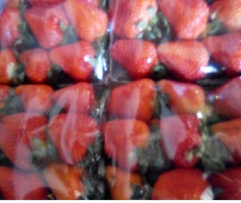 IQF Strawberry Fruit/Frozen Strawberry(wholes/diced/sliced/halves)