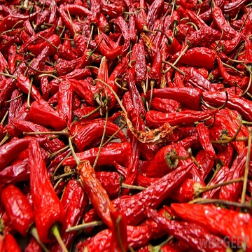 Red Hot Dried Chili Pepper