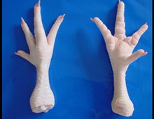 Halal / Fresh / Frozen /Processed Chicken Feet / Paws / Wings For Sale