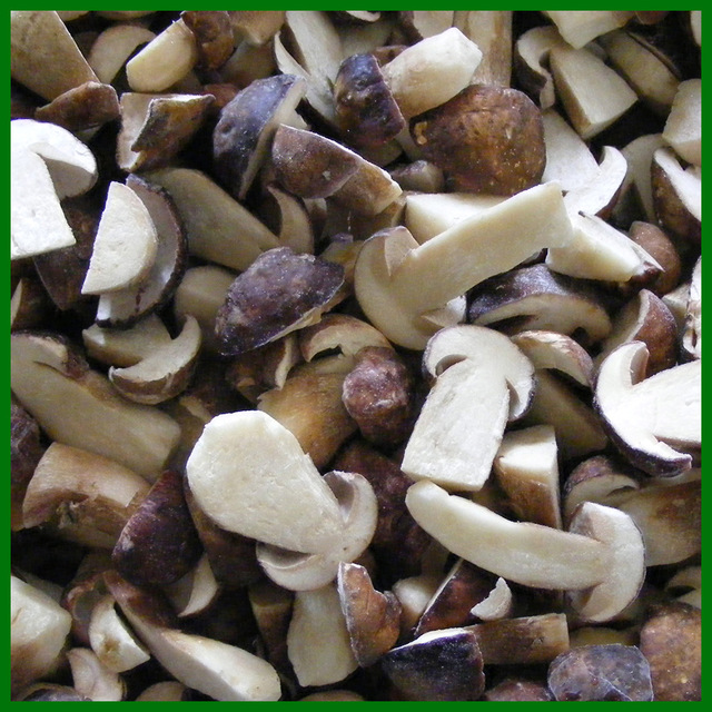 High Quality Cheap Wild Mushroom
