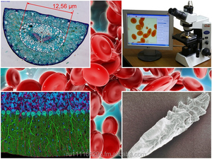 Dianel-Micro-software for automation,visualization,classification and evaluation of laboratory researches on digital microscope