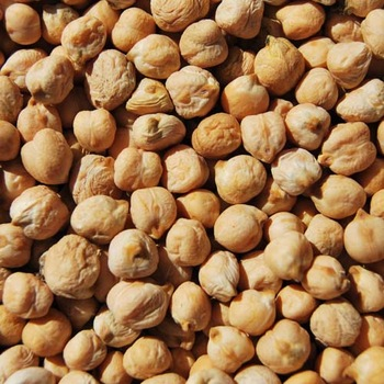 Best quality Kabuli Chickpeas Natural Chickpeas - Kabuli factory supply