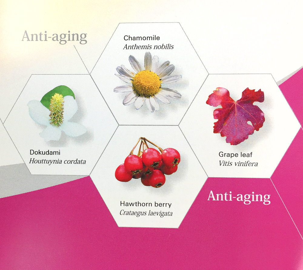 Japanese Herb Mixture Extract (Dokudami, Chamomile, Grape Leaf, Hawthorn Berry) For Anti-aging, Anti-glycation, Skin Elasticity