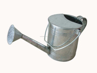 nature galvanized gardening watering can