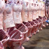 Australlian Mutton-Six Way Cut-Halla-Frozen mutton for sale