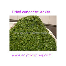 Good Quality Most Popular Spice Importers Coriander Leaves Powder