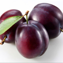 Fresh quality plums available year round discounted price