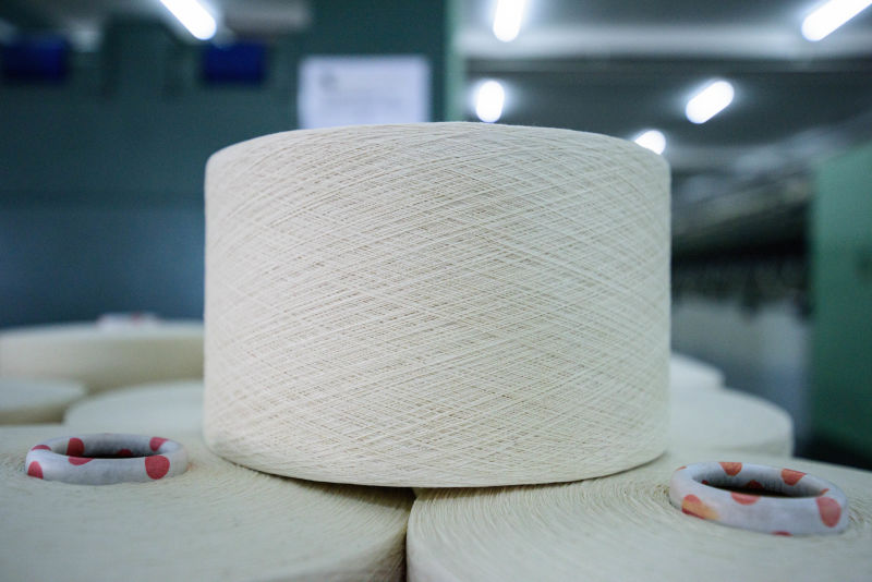 OE 100PCT COTTON YARN 24/1