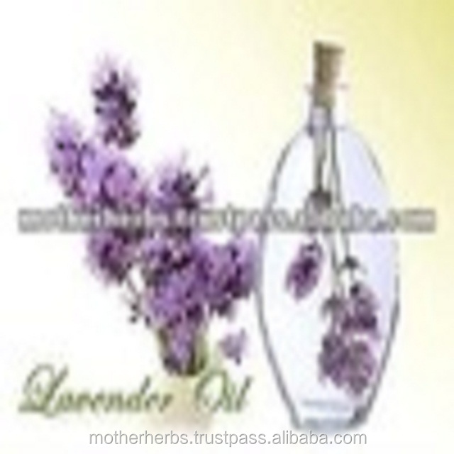 Indian herbs Lavender Essential Oil For Health.
