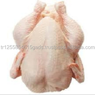 Frozen chicken A Grade Halal