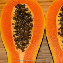Red Lady Papaya ,Premium Papaya Fresh fruits ,Export fruits Thailand