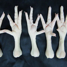 Grade A Chicken Feet/Paw for Sale At Affordable Prices