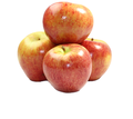 best quality fresh royal gala apples for sale at very good price