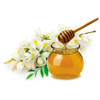 /product-detail/natural-raw-honey-high-quality-organic-honey-acacia-honey-62002342949.html