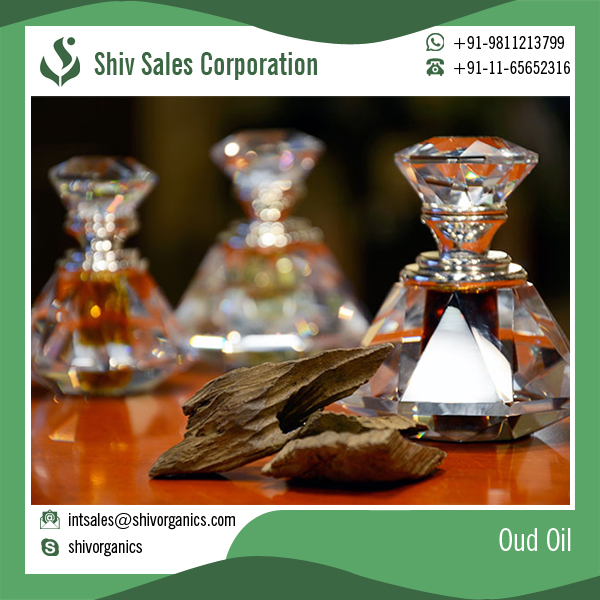 Pure Indian Oud Oil / Oil Perfume Oil / Attar Oud Oil